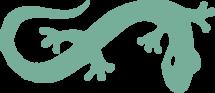 logo split - gecko
